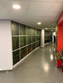 Expograph-decoration-restaurant-inter-entreprises-2